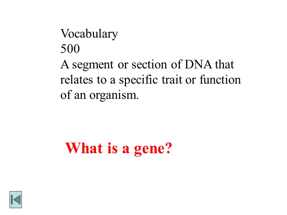 What is a gene Vocabulary 500