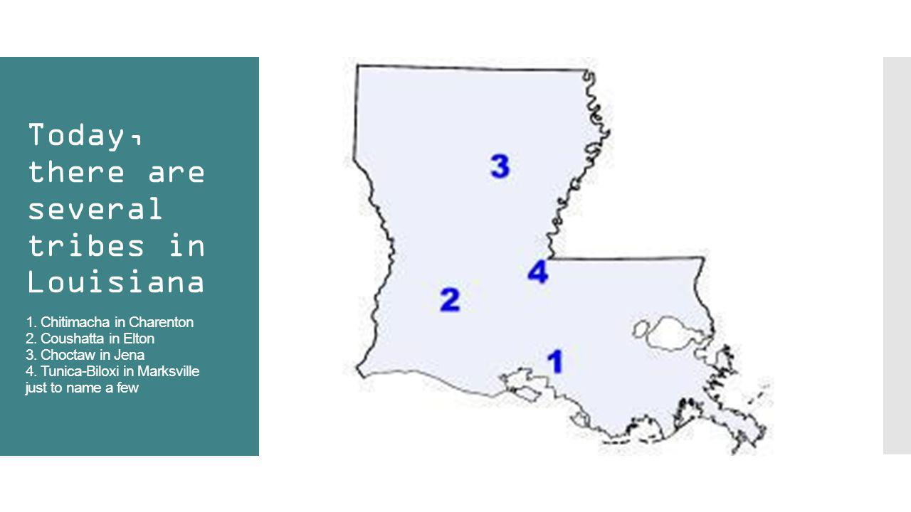 Today, there are several tribes in Louisiana 1