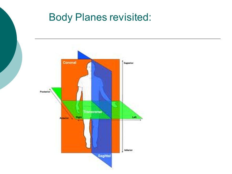 Body Planes revisited: