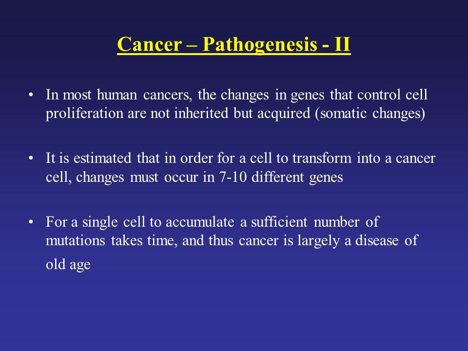Cancer – Pathogenesis - II