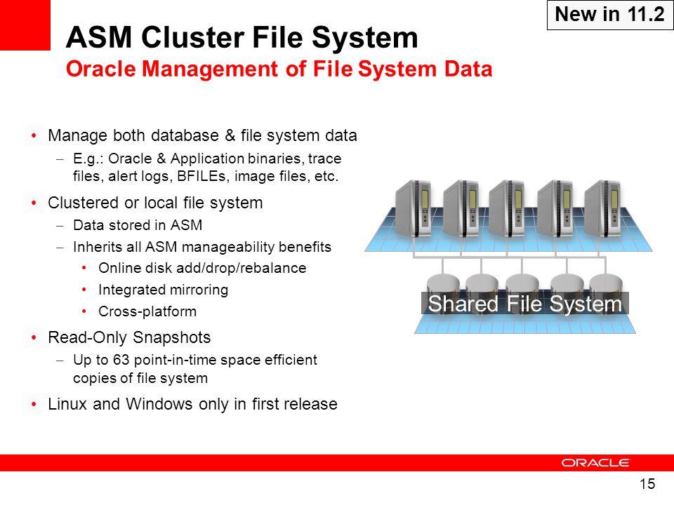 ASM Cluster File System Oracle Management of File System Data