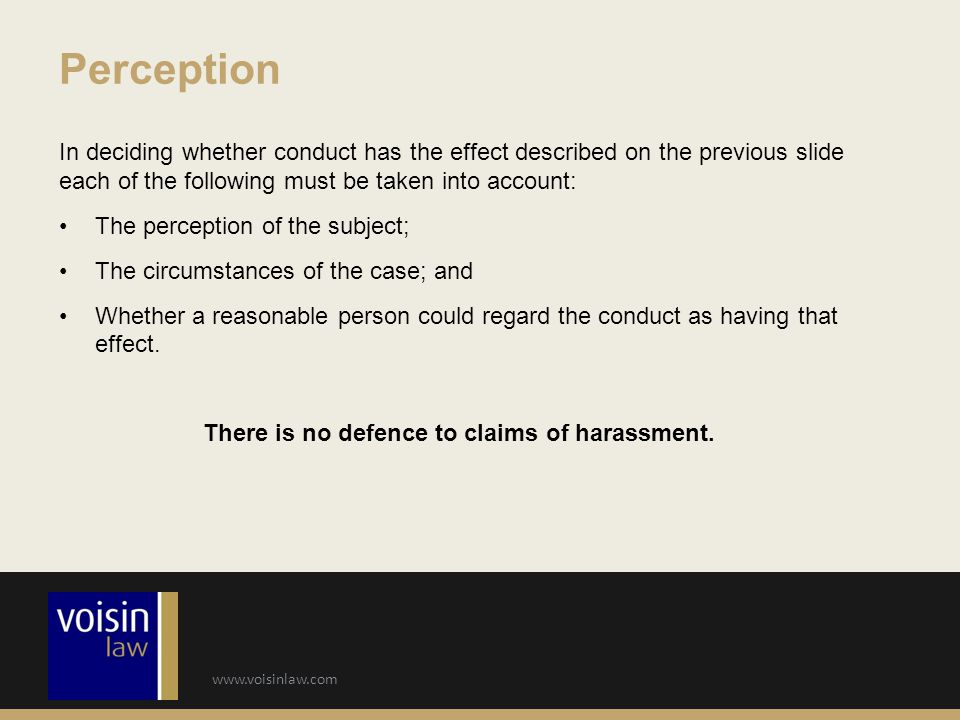 Perception In deciding whether conduct has the effect described on the previous slide each of the following must be taken into account: