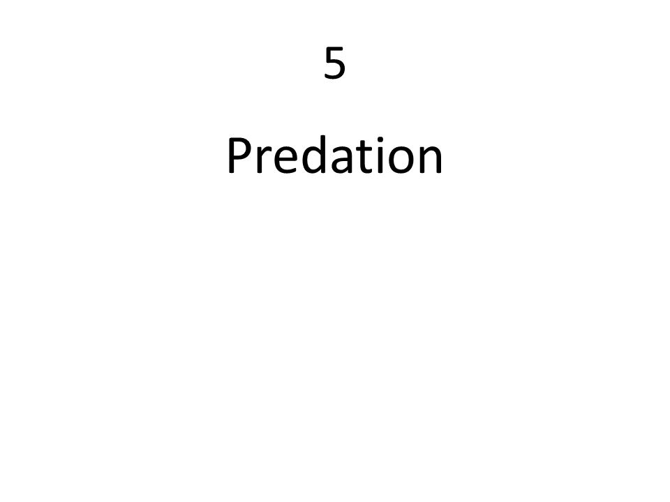 5 Predation