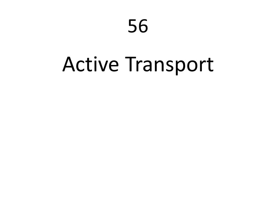 56 Active Transport