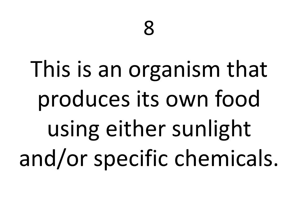 8 This is an organism that produces its own food using either sunlight and/or specific chemicals.