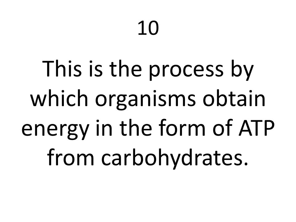 10 This is the process by which organisms obtain energy in the form of ATP from carbohydrates.
