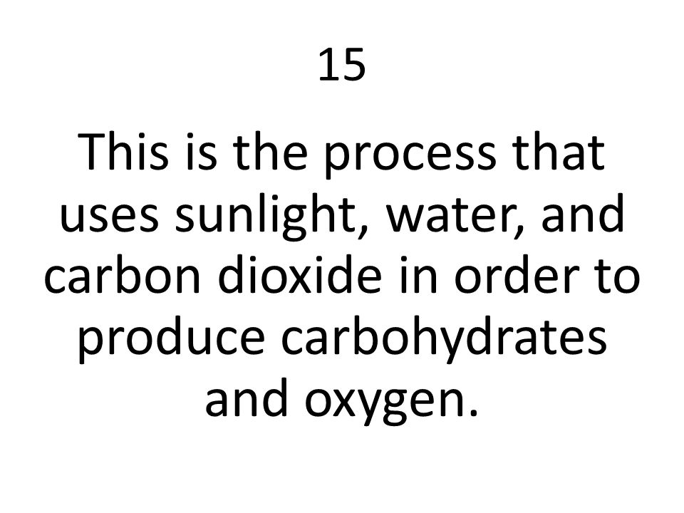 15 This is the process that uses sunlight, water, and carbon dioxide in order to produce carbohydrates and oxygen.