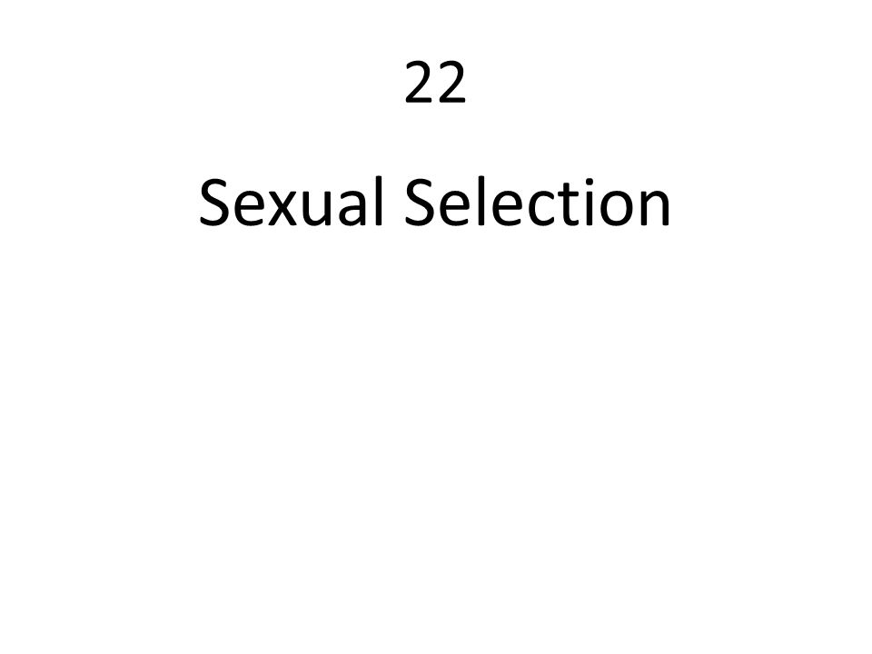 22 Sexual Selection