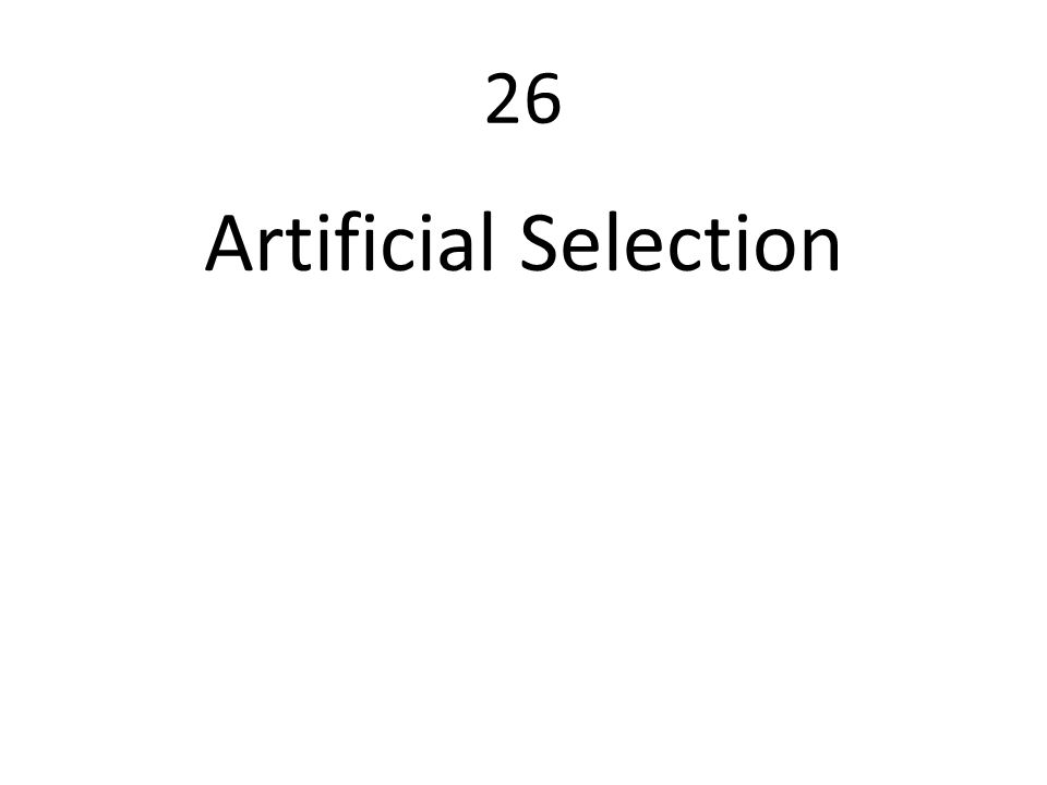 26 Artificial Selection
