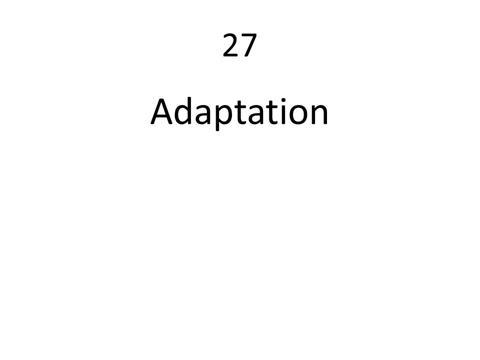 27 Adaptation