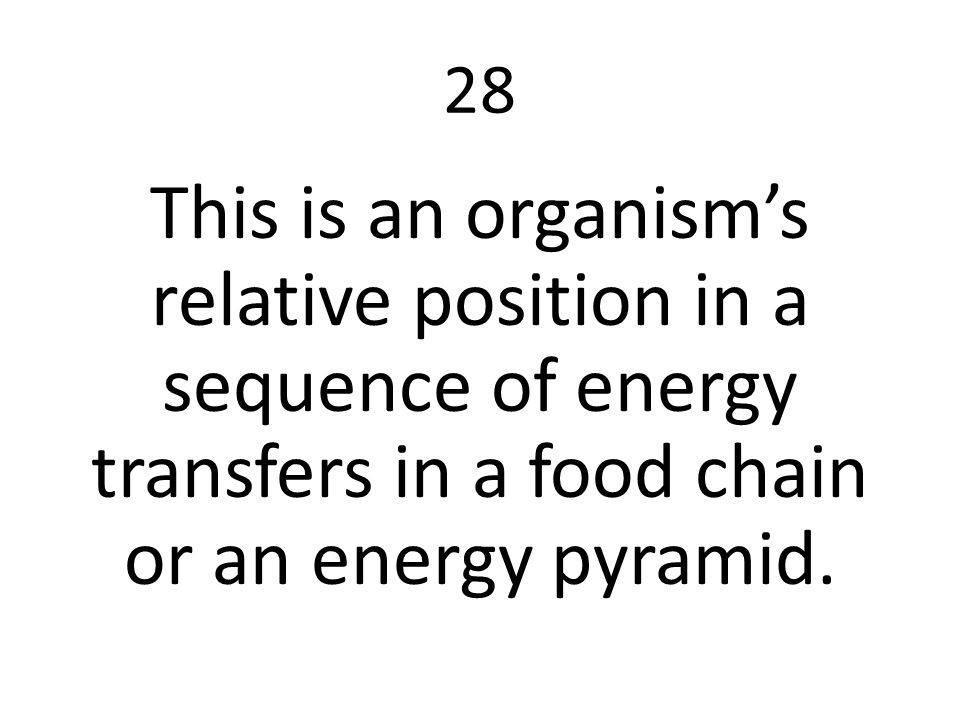 28 This is an organism's relative position in a sequence of energy transfers in a food chain or an energy pyramid.
