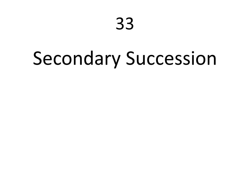 33 Secondary Succession
