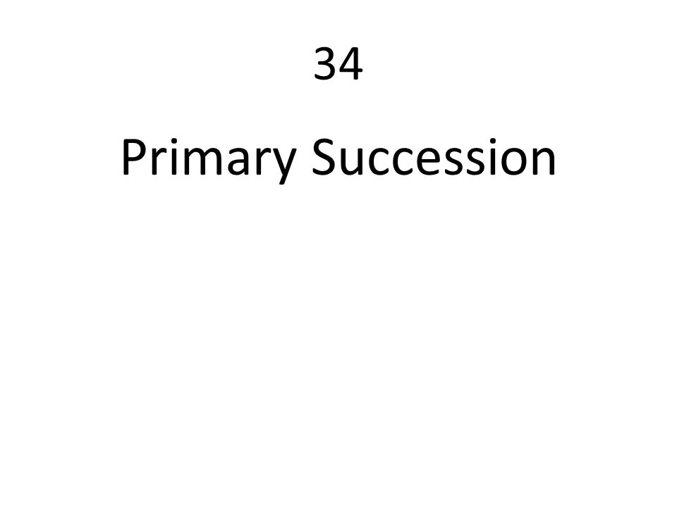34 Primary Succession