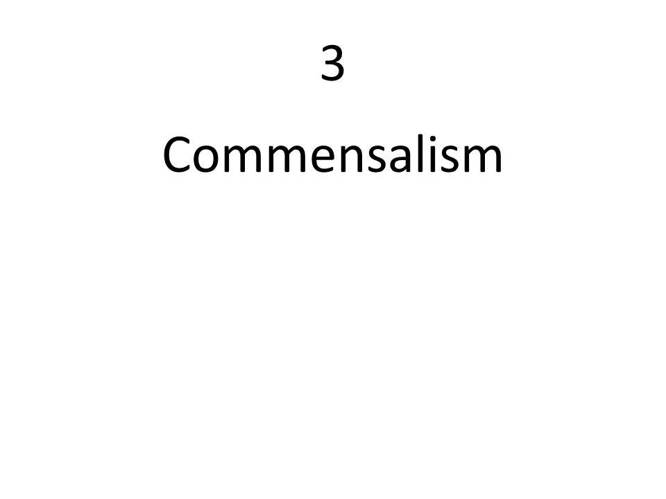 3 Commensalism