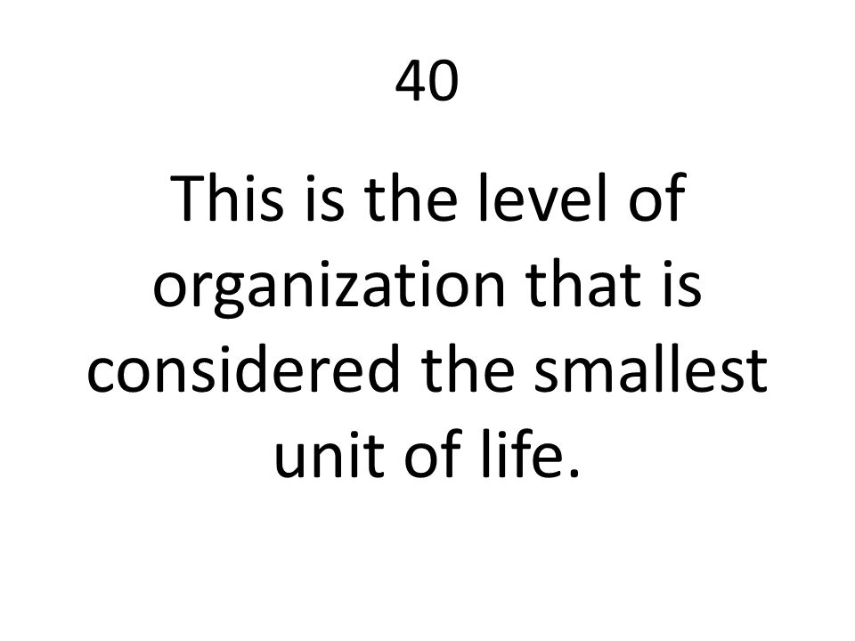 40 This is the level of organization that is considered the smallest unit of life.