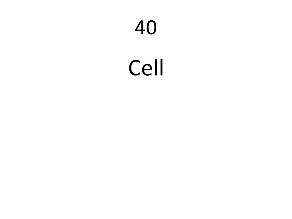 40 Cell