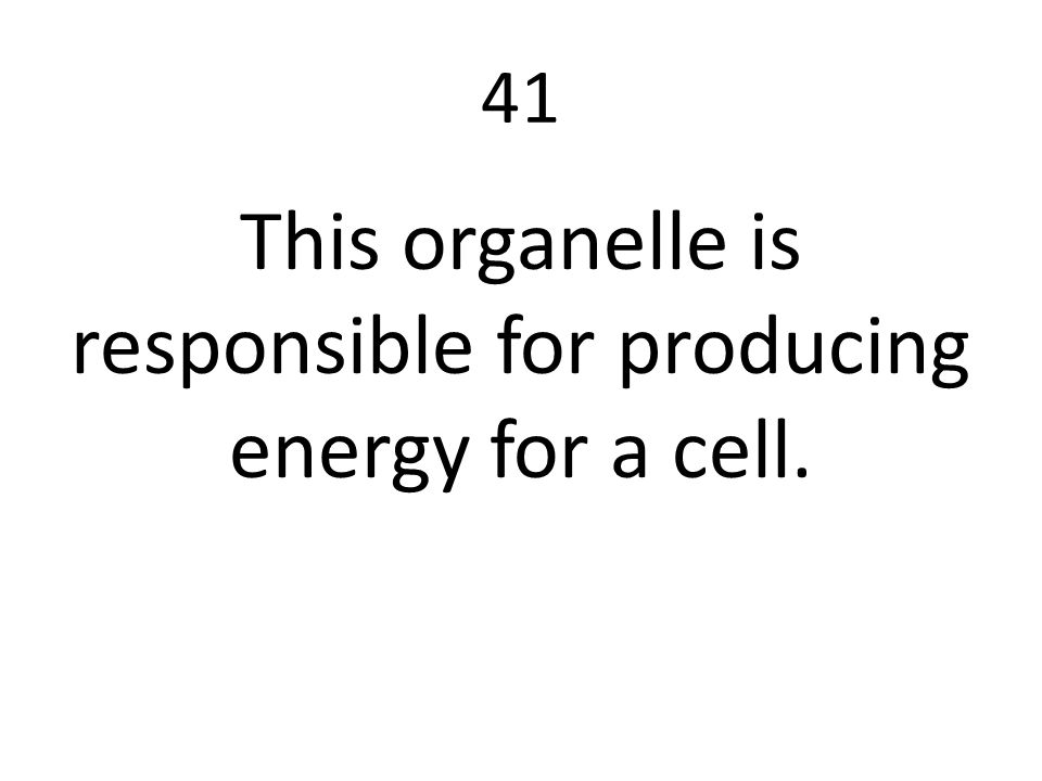 This organelle is responsible for producing energy for a cell.