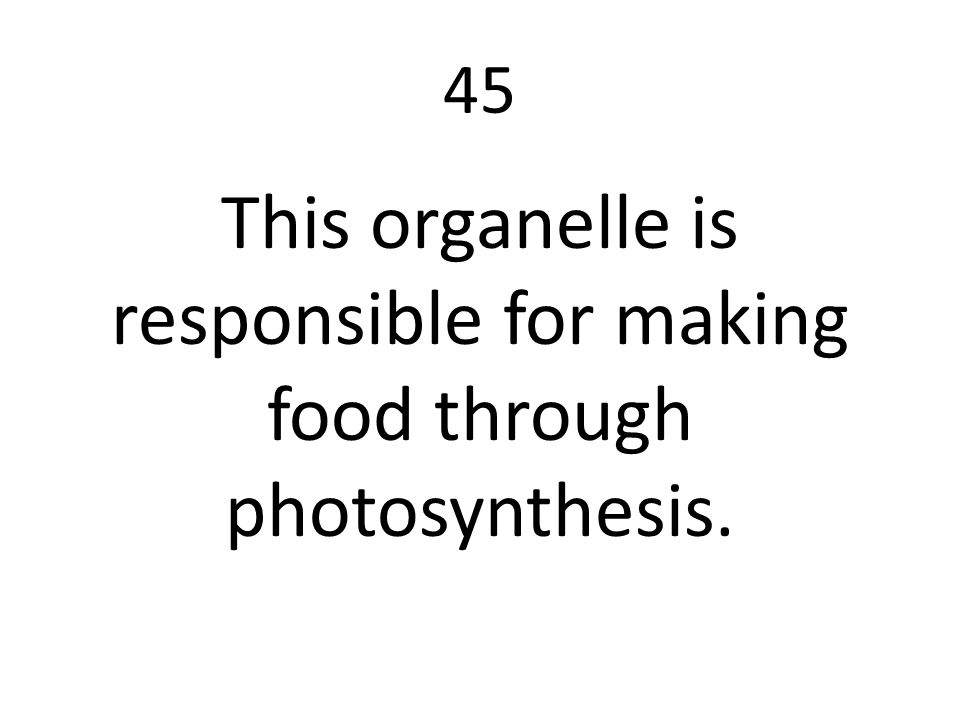 This organelle is responsible for making food through photosynthesis.