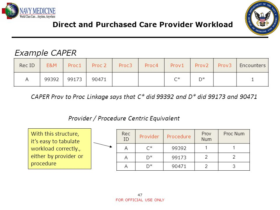 Direct and Purchased Care Provider Workload
