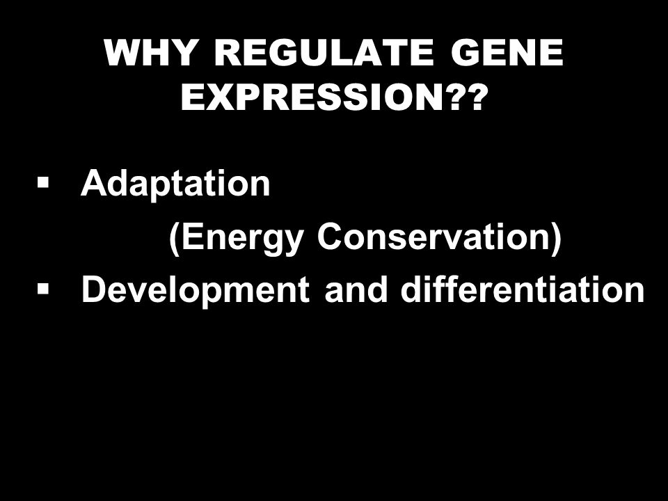 WHY REGULATE GENE EXPRESSION