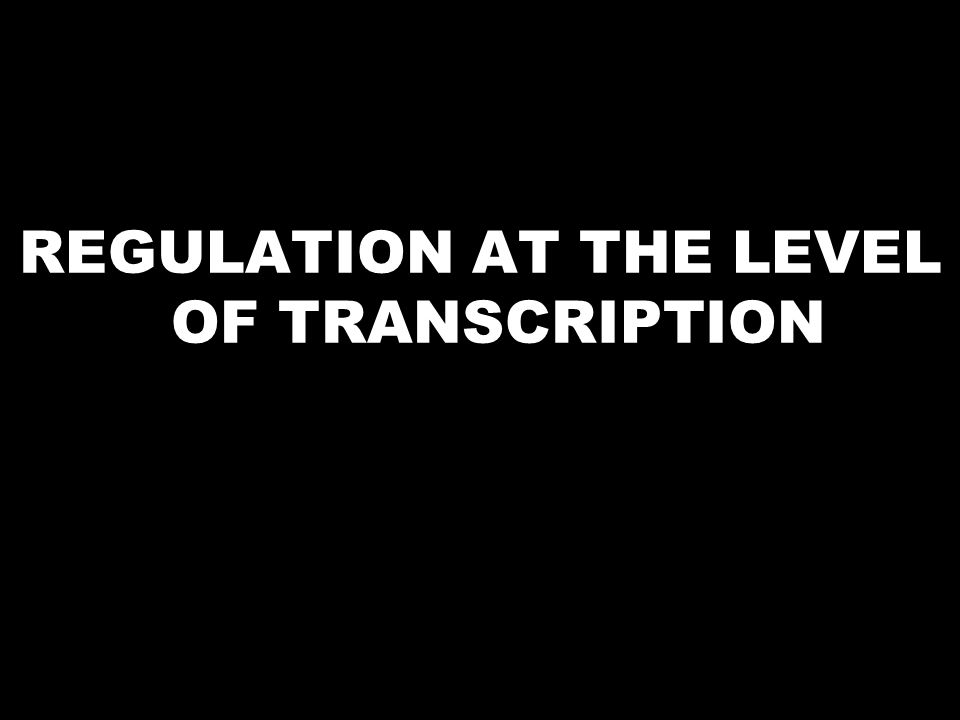REGULATION AT THE LEVEL OF TRANSCRIPTION