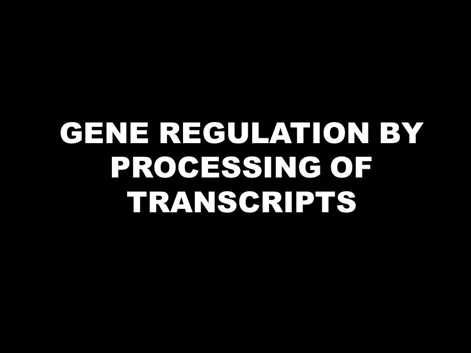GENE REGULATION BY PROCESSING OF TRANSCRIPTS