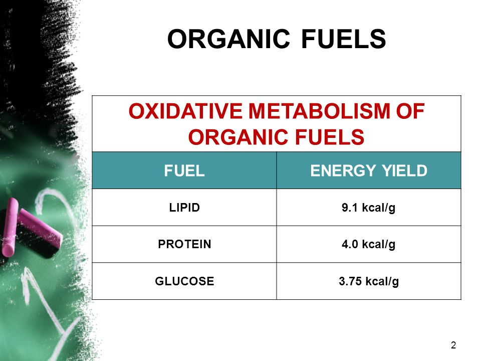 OXIDATIVE METABOLISM OF ORGANIC FUELS