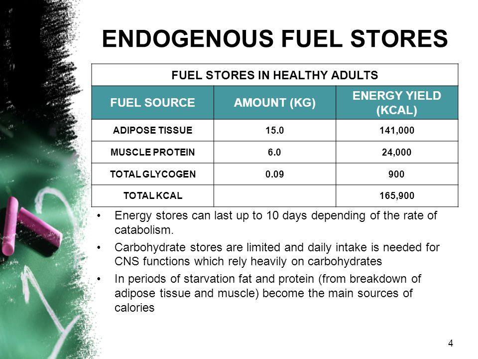 ENDOGENOUS FUEL STORES