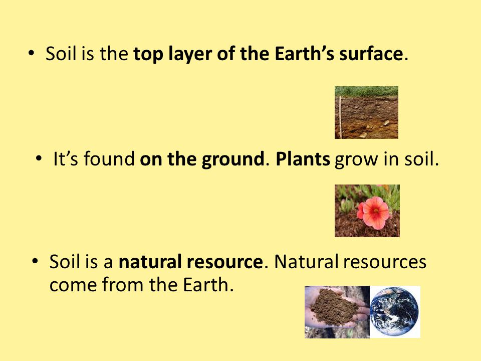 Soil is the top layer of the Earth's surface.