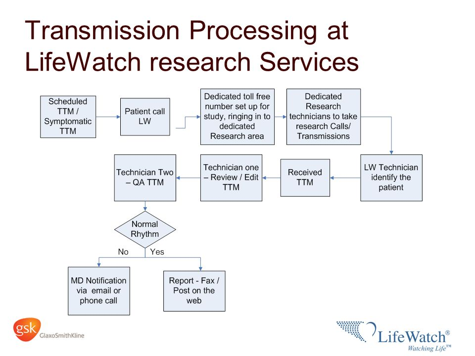 Transmission Processing at LifeWatch research Services