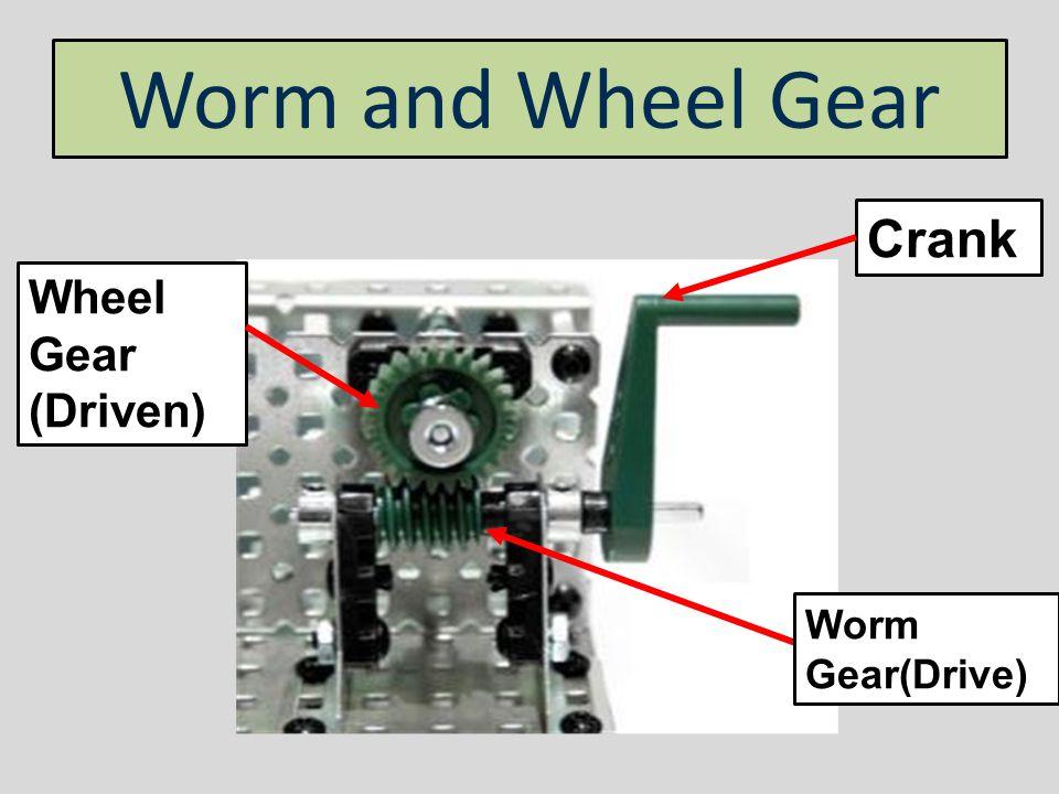Worm and Wheel Gear Crank Wheel Gear (Driven) Worm Gear(Drive)