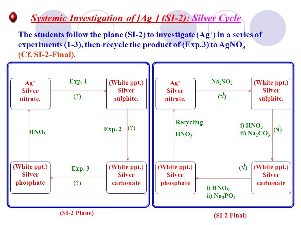 Systemic Investigation of [Ag+] (SI-2): Silver Cycle