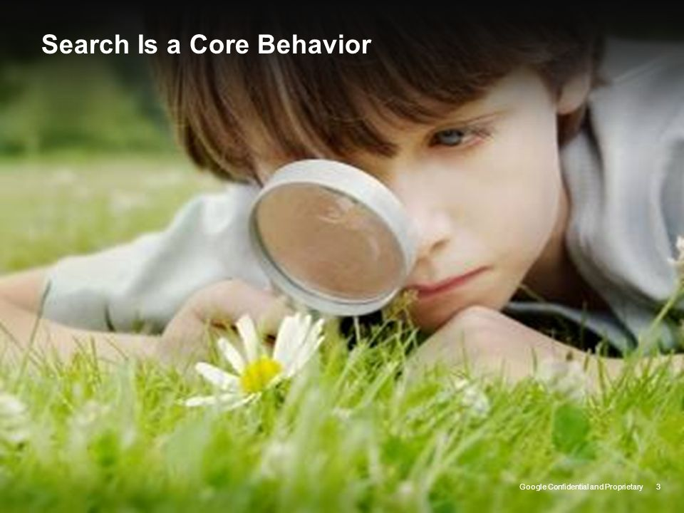 Search Is a Core Behavior
