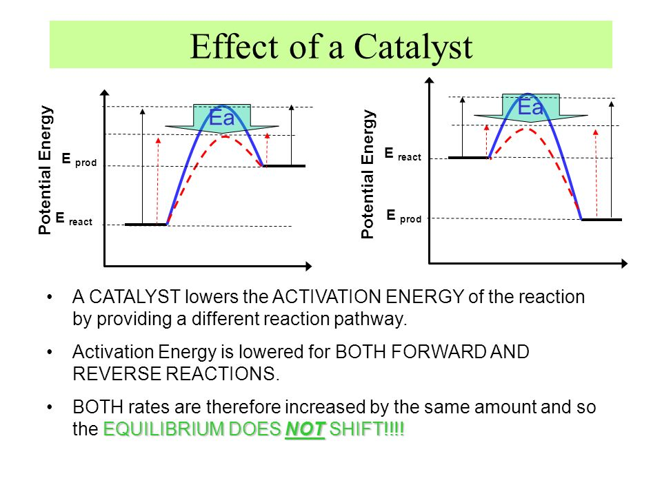 Effect of a Catalyst Ea Ea