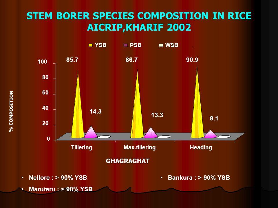 STEM BORER SPECIES COMPOSITION IN RICE AICRIP,KHARIF 2002