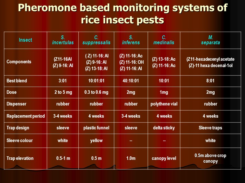 Pheromone based monitoring systems of rice insect pests