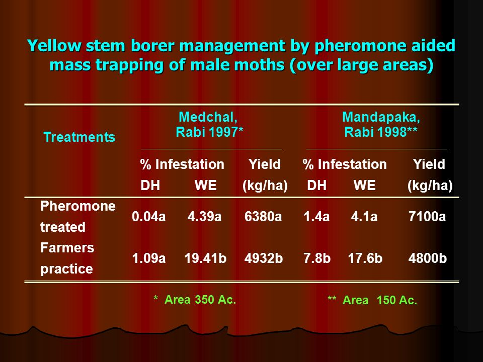 Yellow stem borer management by pheromone aided mass trapping of male moths (over large areas)