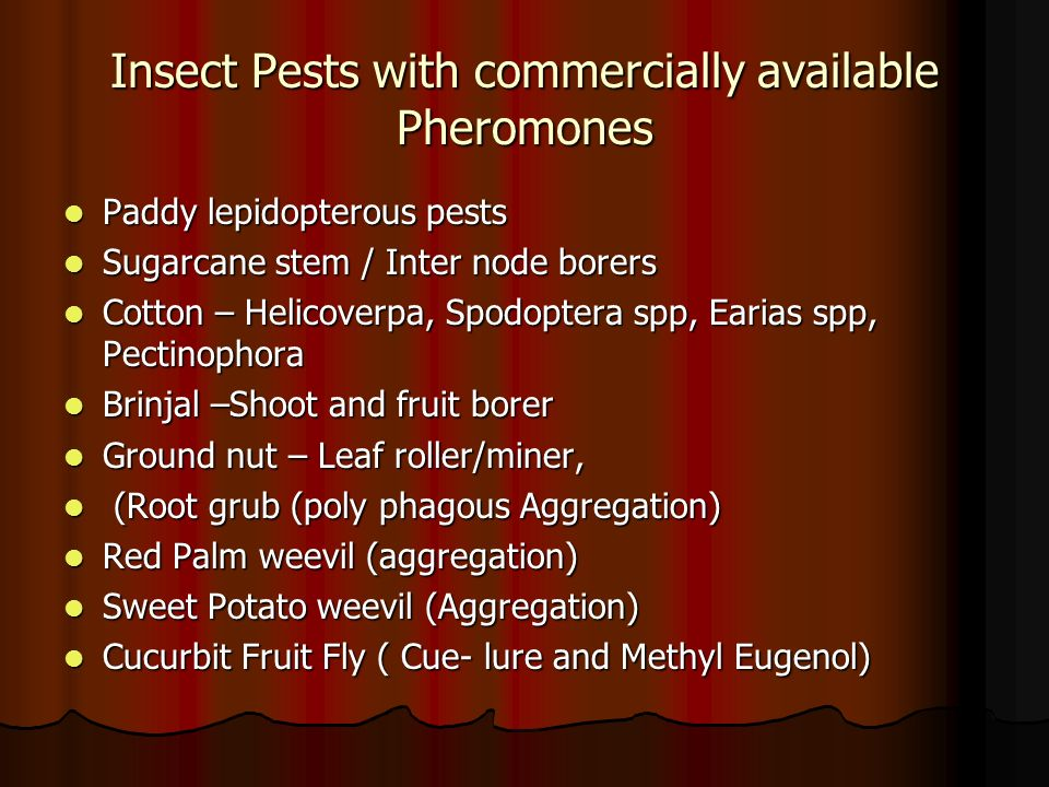 Insect Pests with commercially available Pheromones