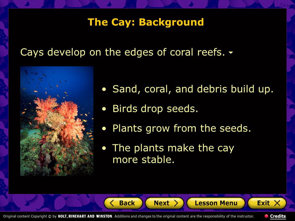 The Cay: Background Cays develop on the edges of coral reefs. Sand, coral, and debris build up. Birds drop seeds.