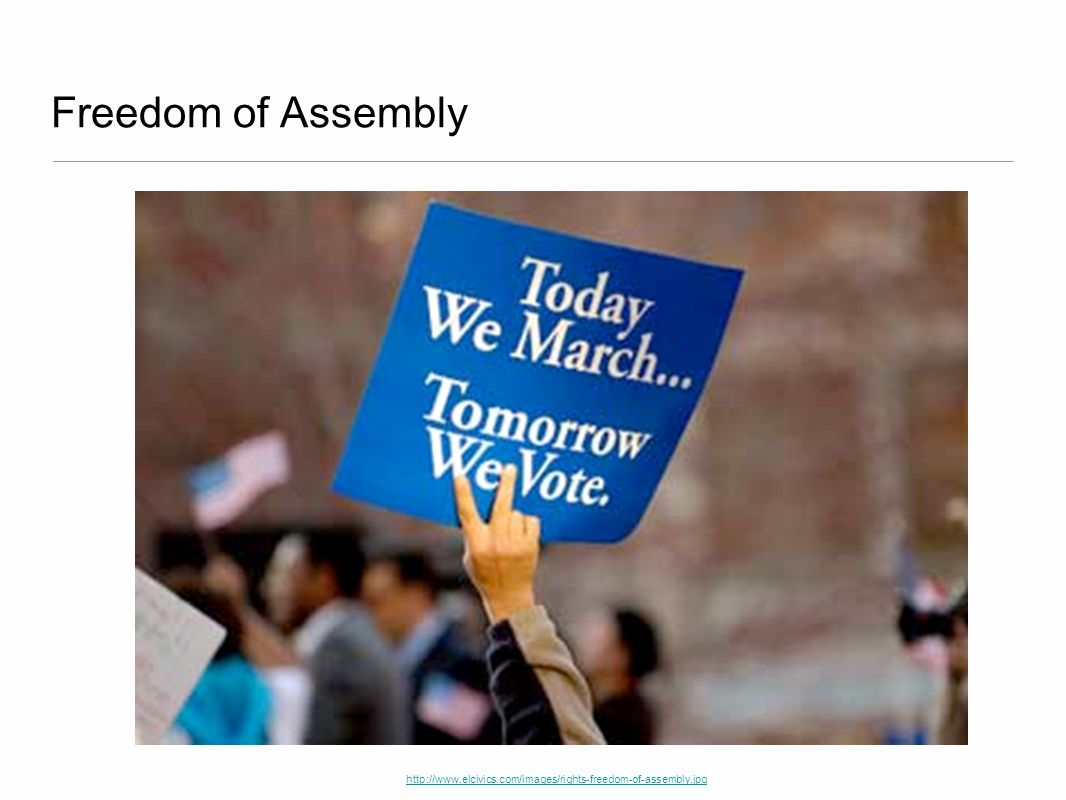 Freedom of Assembly http://www.elcivics.com/images/rights-freedom-of-assembly.jpg