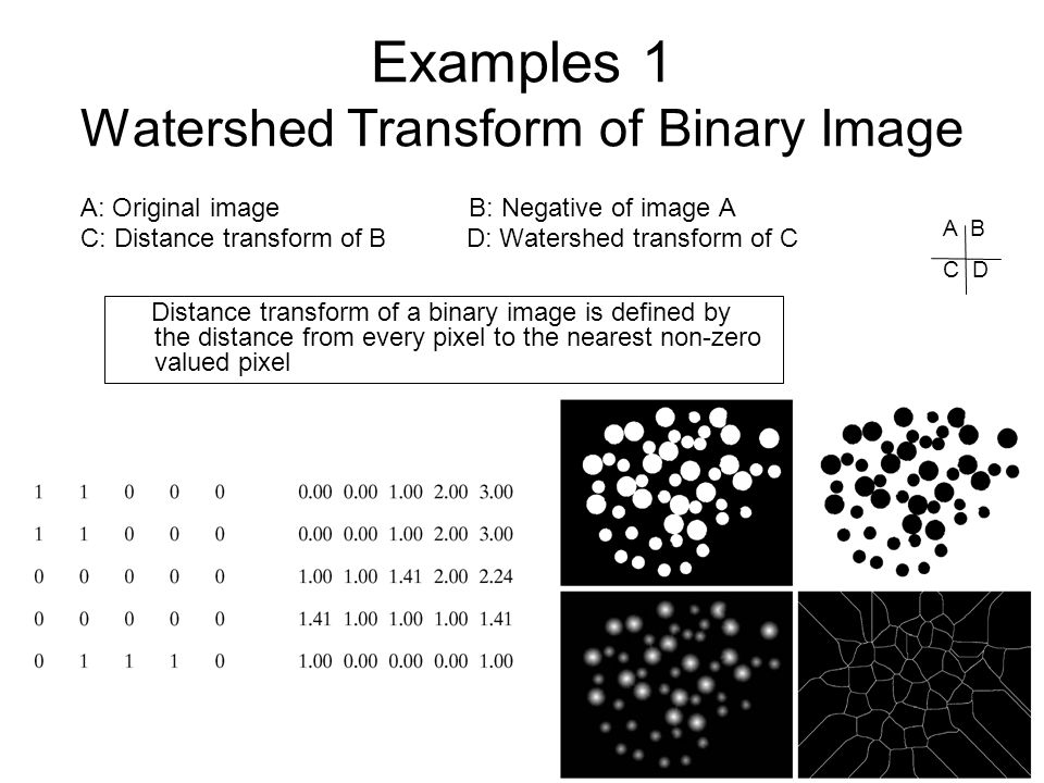 Examples 1 Watershed Transform of Binary Image