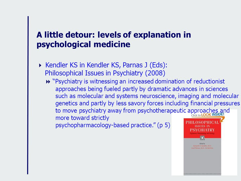 A little detour: levels of explanation in psychological medicine