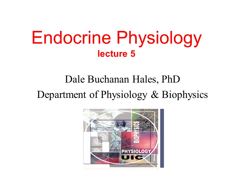 Endocrine Physiology lecture 5