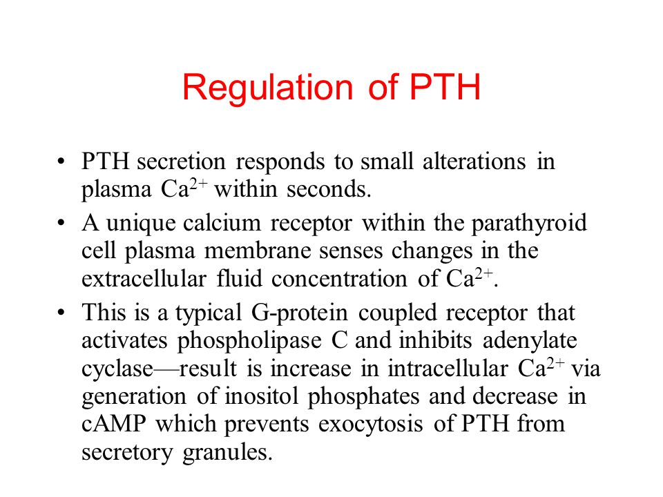 Regulation of PTH PTH secretion responds to small alterations in plasma Ca2+ within seconds.