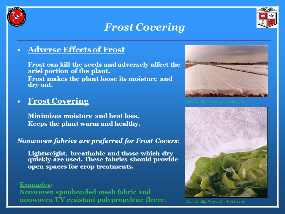 Frost Covering Adverse Effects of Frost