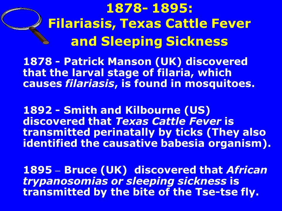 1878- 1895: Filariasis, Texas Cattle Fever and Sleeping Sickness