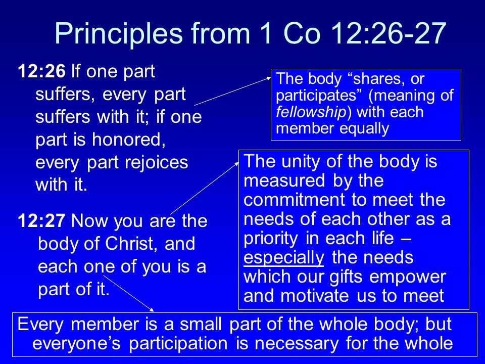 Principles from 1 Co 12:26-27 12:26 If one part suffers, every part suffers with it; if one part is honored, every part rejoices with it.