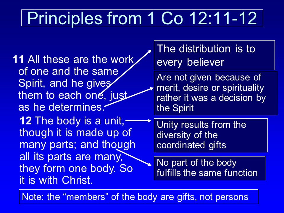 Principles from 1 Co 12:11-12 The distribution is to every believer