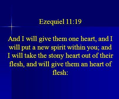 Ezequiel 11:19