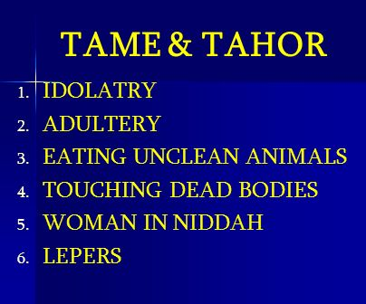 TAME & TAHOR IDOLATRY ADULTERY EATING UNCLEAN ANIMALS
